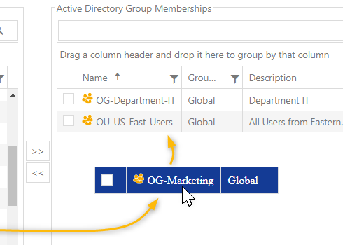 Assign group memberships with IDM-Portal
